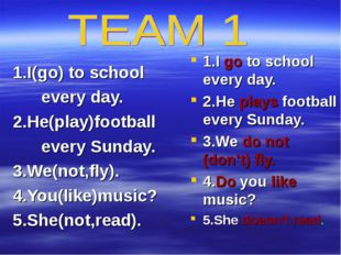 1.I(go) to school every day. 2.He(play)football every Sunday. 3.We(not,fly).