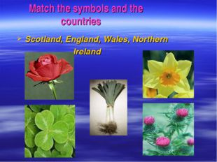 Match the symbols and the countries Scotland, England, Wales, Northern Ireland