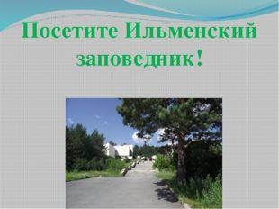 Посетите Ильменский заповедник!
