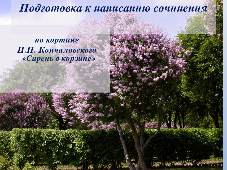 Подготовка к написанию сочинения по картине П.П. Кончаловского «Сирень в кор...