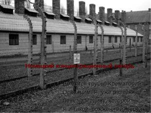 . Немецкий концентрационный лагерь Дымятся трубы. Крематорий. Освенцим. Я, у