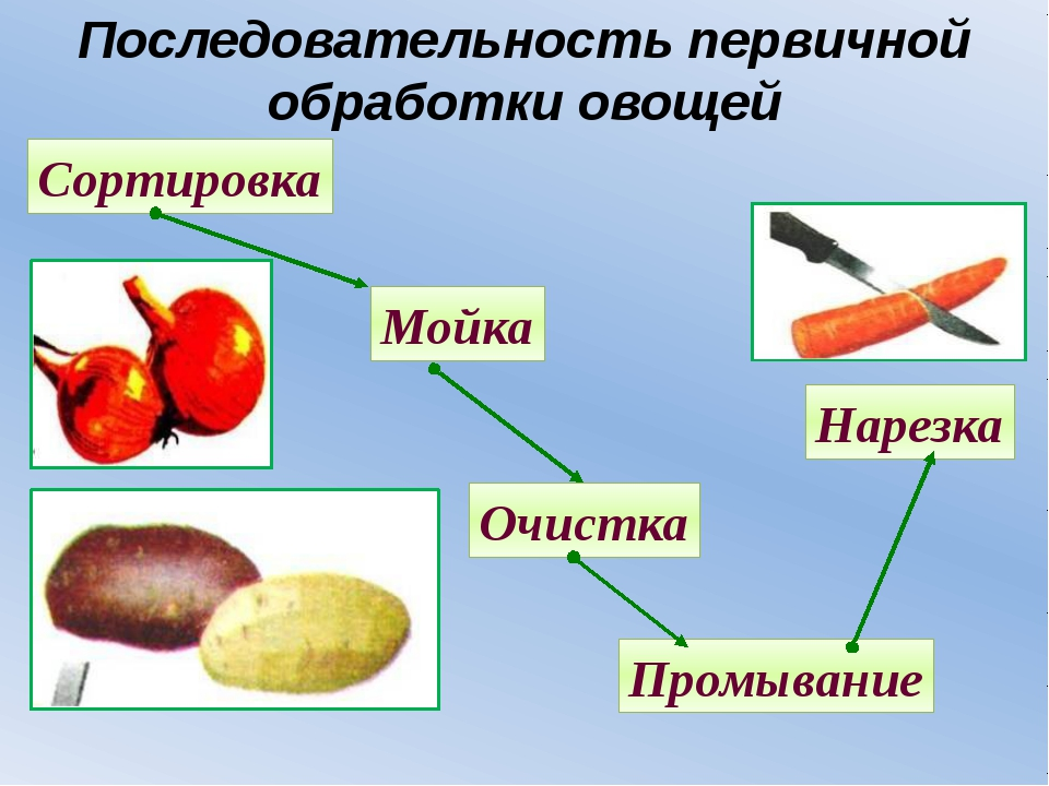 Последовательность первичной обработки овощей Сортировка Мойка Очистка Промыв...