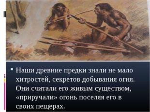 Наши древние предки знали не мало хитростей, секретов добывания огня. Они счи