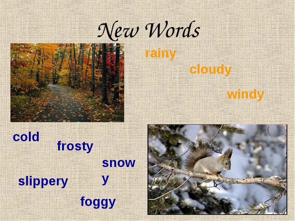 New Words rainy cloudy windy cold frosty snowy slippery foggy