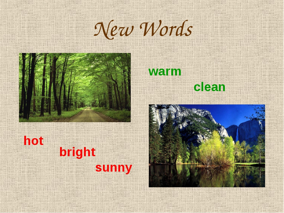 New Words warm clean hot bright sunny
