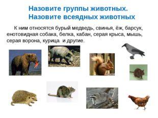 Назовите группы животных. Назовите всеядных животных К ним относятся бурый ме