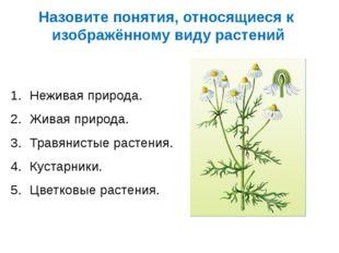 Назовите понятия, относящиеся к изображённому виду растений Неживая природа.