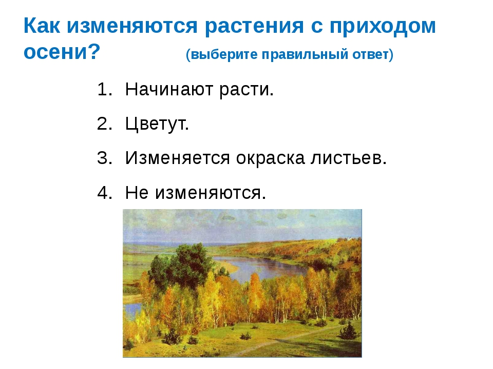 Как изменяются растения с приходом осени? (выберите правильный ответ) Начинаю...