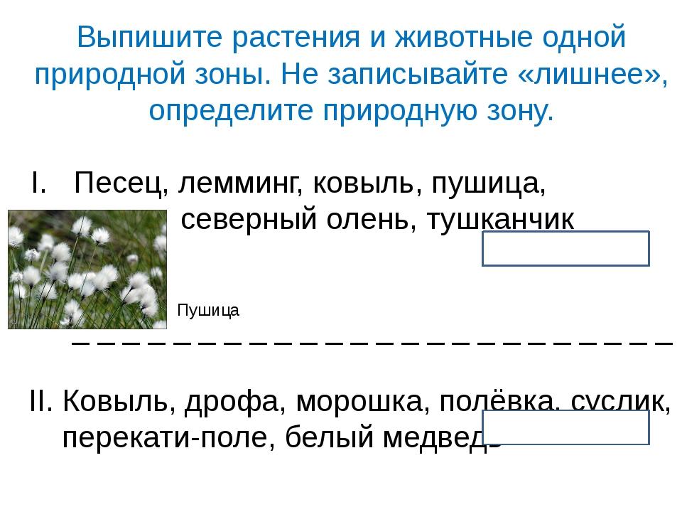 Выпишите растения и животные одной природной зоны. Не записывайте «лишнее», о...