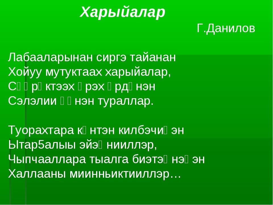Харыйалар Г.Данилов Лабааларынан сиргэ тайанан Хойуу мутуктаах харыйалар, Сү...