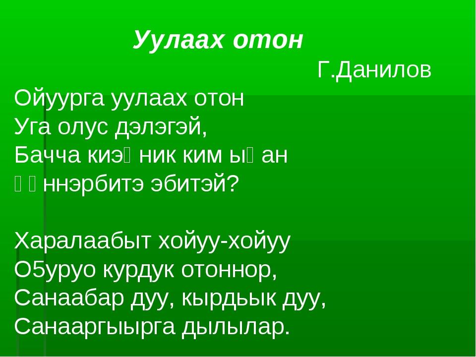 Уулаах отон Г.Данилов Ойуурга уулаах отон Уга олус дэлэгэй, Бачча киэңник ки...