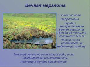Мерзлый грунт не пропускает воду, и она застаивается на поверхности. Поэтому