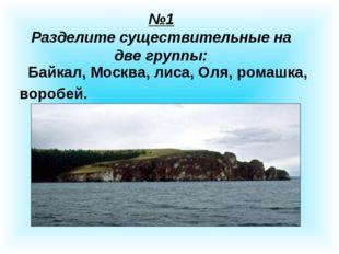 №1 Разделите существительные на две группы: Байкал, Москва, лиса, Оля, ромашк