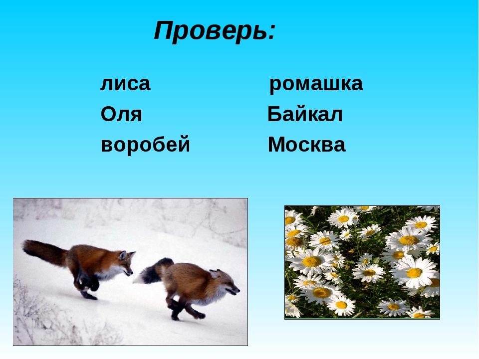 Проверь: лиса ромашка Оля Байкал воробей Москва