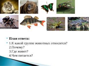 План ответа: 1.К какой группе животных относится? 2.Почему? 3.Где живет? 4.Че