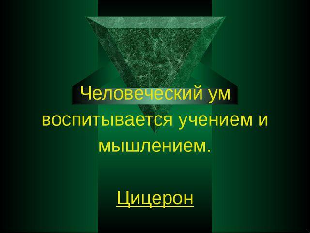 Человеческий ум воспитывается учением и мышлением. Цицерон