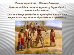 Родина картофеля - Южная Америка. Древние индейцы считали картошку даром бого