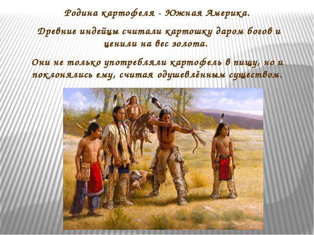 Родина картофеля - Южная Америка. Древние индейцы считали картошку даром бого...