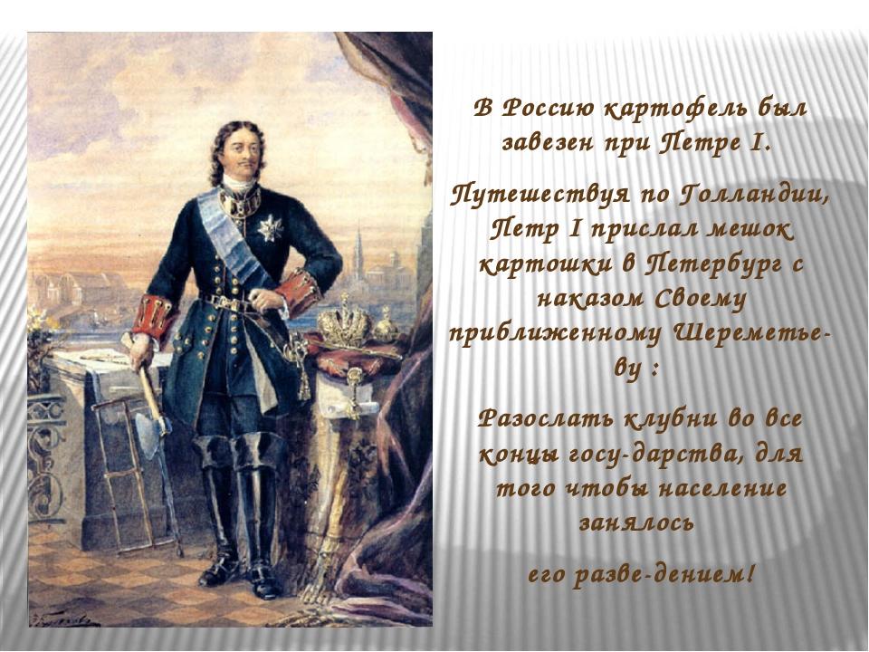 В Россию картофель был завезен при Петре I. Путешествуя по Голландии, Петр I...