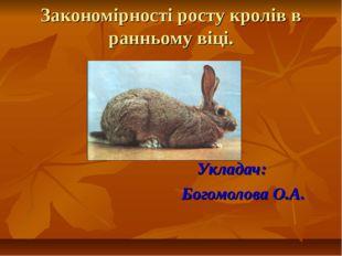 Закономірності росту кролів в ранньому віці. Укладач: Богомолова О.А.
