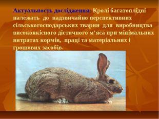 Актуальность дослідження: Кролі багатоплідні належать до надзвичайно перспек