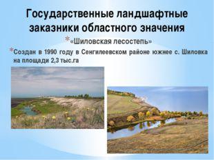 Государственные ландшафтные заказники областного значения «Шиловская лесостеп