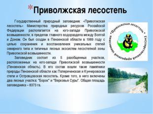 Приволжская лесостепь Государственный природный заповедник «Приволжская лесо
