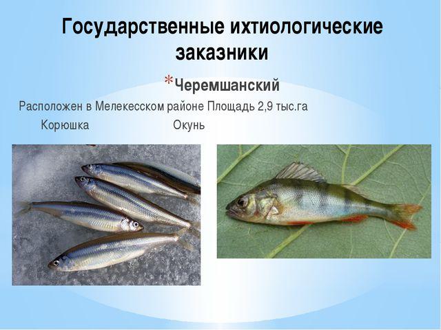 Государственные ихтиологические заказники Черемшанский Расположен в Мелекесск...