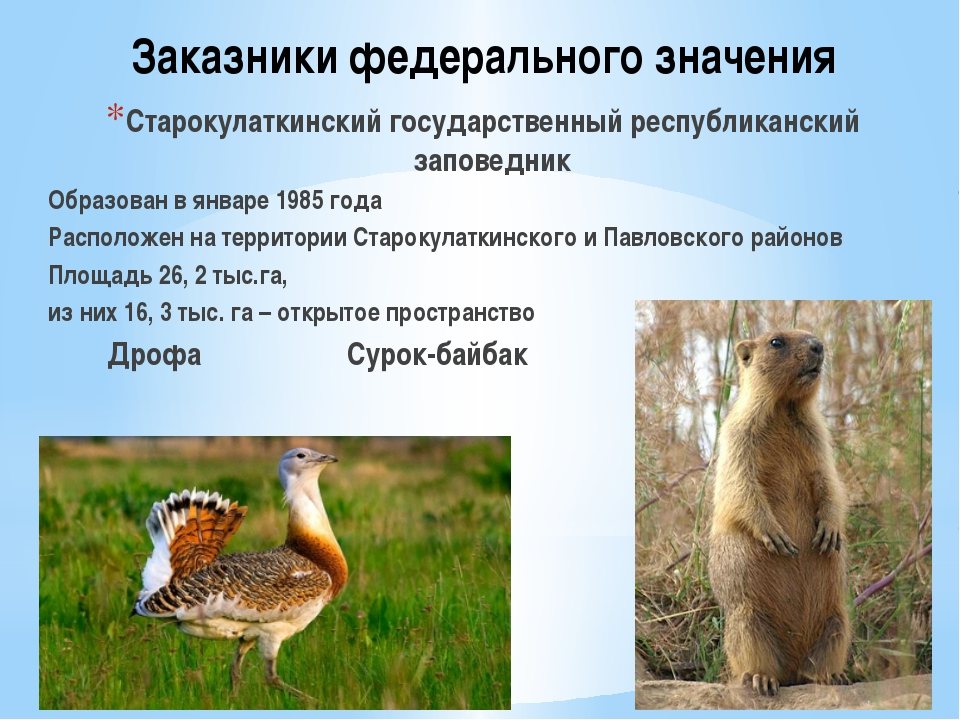 Заказники федерального значения Старокулаткинский государственный республикан...