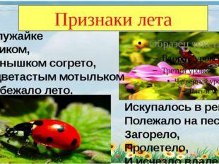Признаки лета По лужайке Босиком, Солнышком согрето, За цветастым мотыльком П
