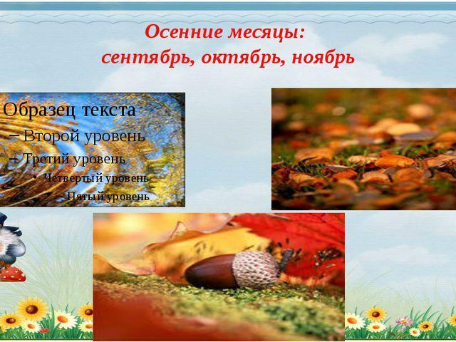 Осенние месяцы: сентябрь, октябрь, ноябрь