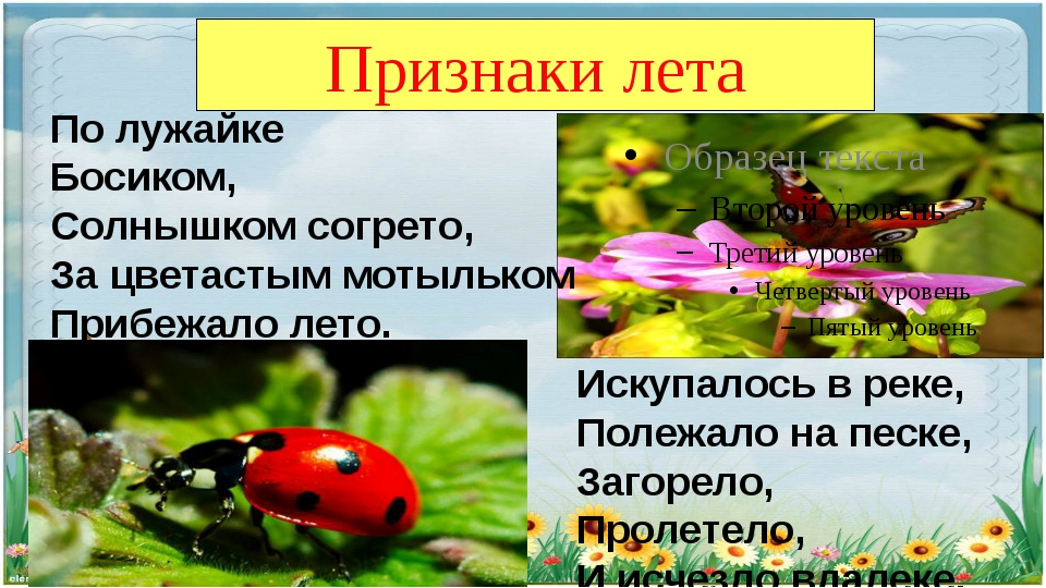 Признаки лета По лужайке Босиком, Солнышком согрето, За цветастым мотыльком П...