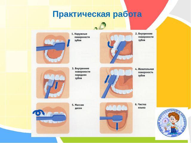 Практическая работа «Чистим зубы» L/O/G/O