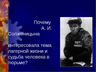 Почему А. И. Солженицына интересовала тема лагерной жизни и судьба человека