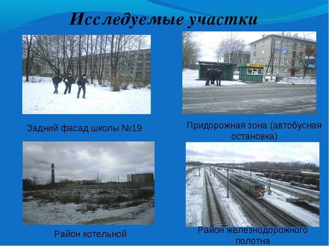 Исследуемые участки Задний фасад школы №19 Придорожная зона (автобусная остан...