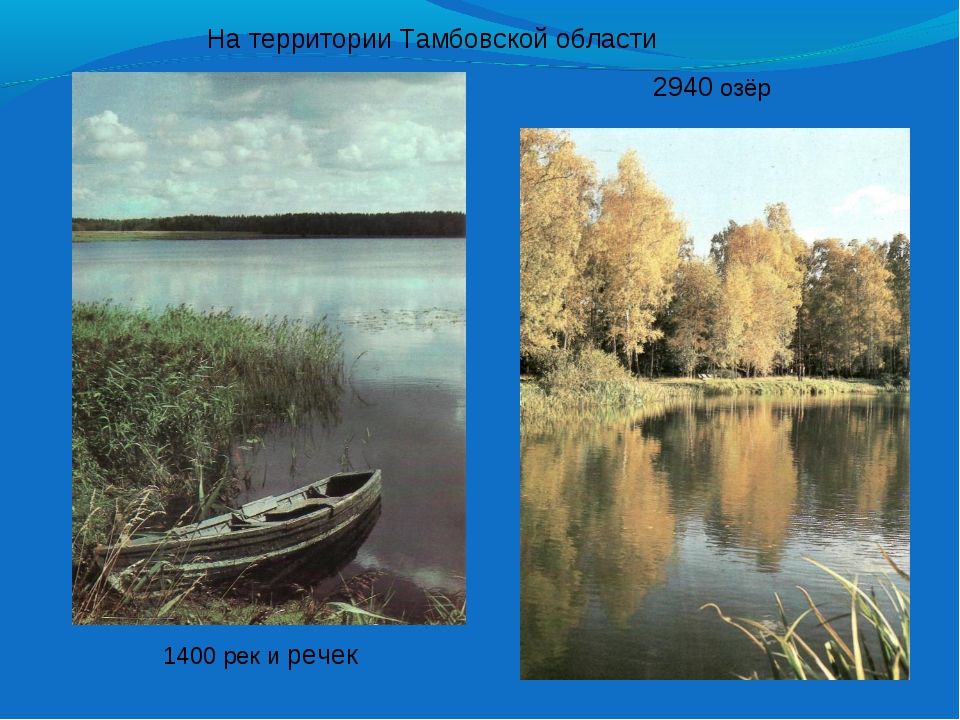 1400 рек и речек На территории Тамбовской области 2940 озёр