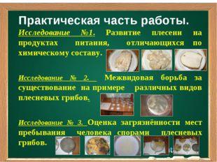 Практическая часть работы. Исследование №1. Развитие плесени на продуктах пит