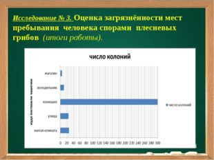 Подзаголовок Исследование № 3. Оценка загрязнённости мест пребывания человека