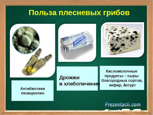Польза плесневых грибов Антибиотики пенициллин Дрожжи в хлебопечении Кисломо...