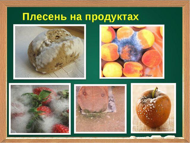 Плесень на продуктах питания
