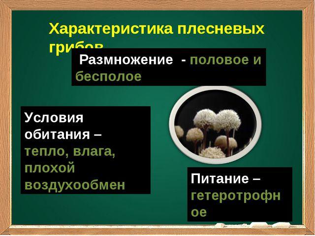 Характеристика плесневых грибов Размножение - половое и бесполое Питание – ге...