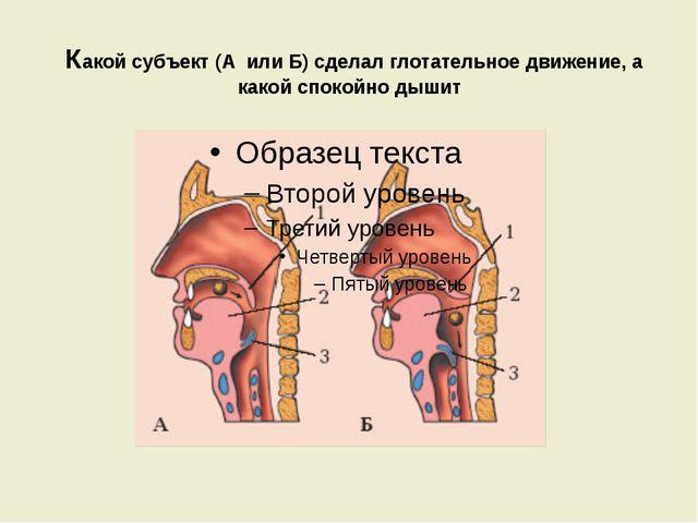 Какой субъект (А или Б) сделал глотательное движение, а какой спокойно дышит