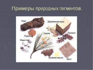 Примеры природных пигментов.
