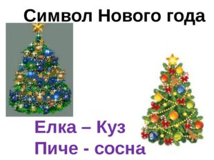 Елка – Куз Пиче - сосна Символ Нового года