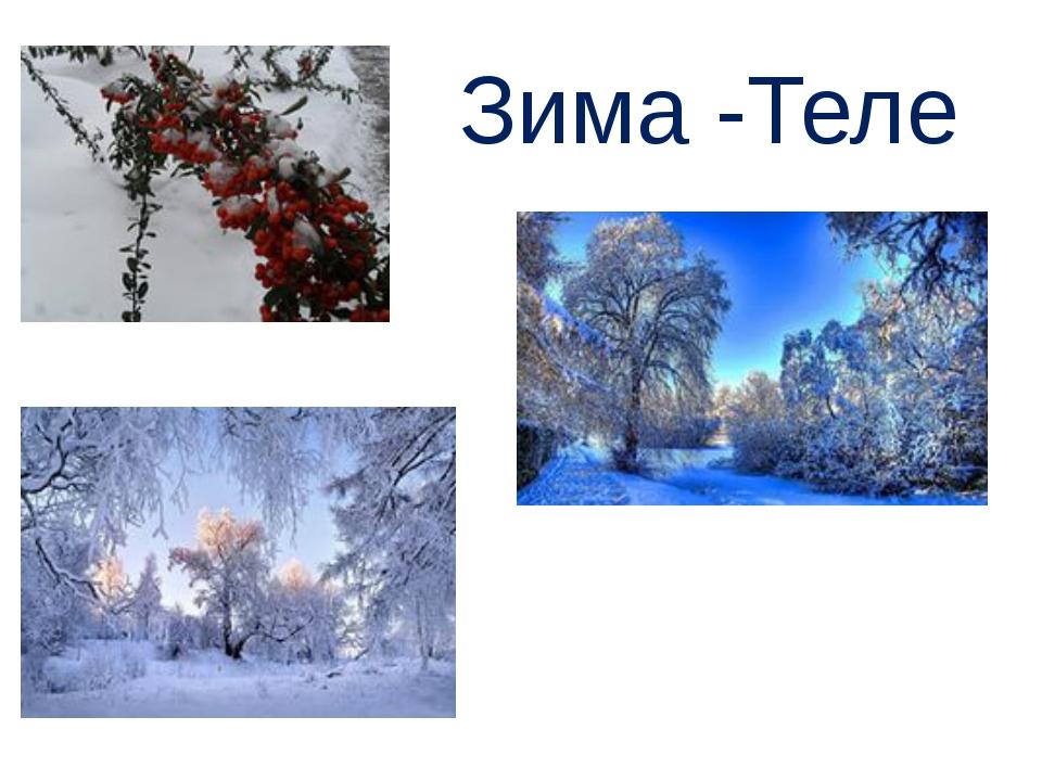 Зима -Теле