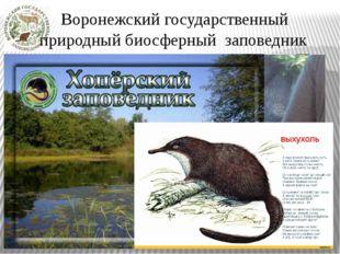 Воронежский государственный  природный биосферный заповедник