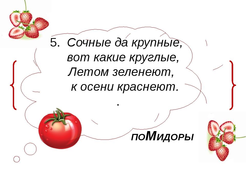 5. Сочные да крупные, вот какие круглые, Летом зеленеют, к осени краснеют. ....
