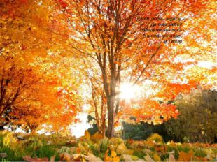 Дарит осень чудеса, Да еще какие! Разнаряжены леса В шапки золотые. М. Геллер
