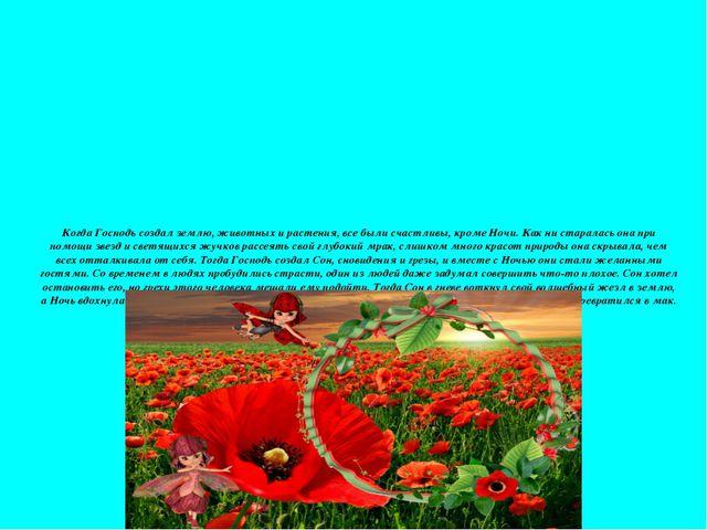 Когда Господь создал землю, животных и растения, все были счастливы, кроме Но...