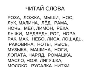ЧИТАЙ СЛОВА РОЗА, ЛОЖКА, МЫШИ, НОС, ЛУК, МАЛИНА, ЛЁД, РАМА, НОЧЬ, МЕЛ, ЛИМОН,